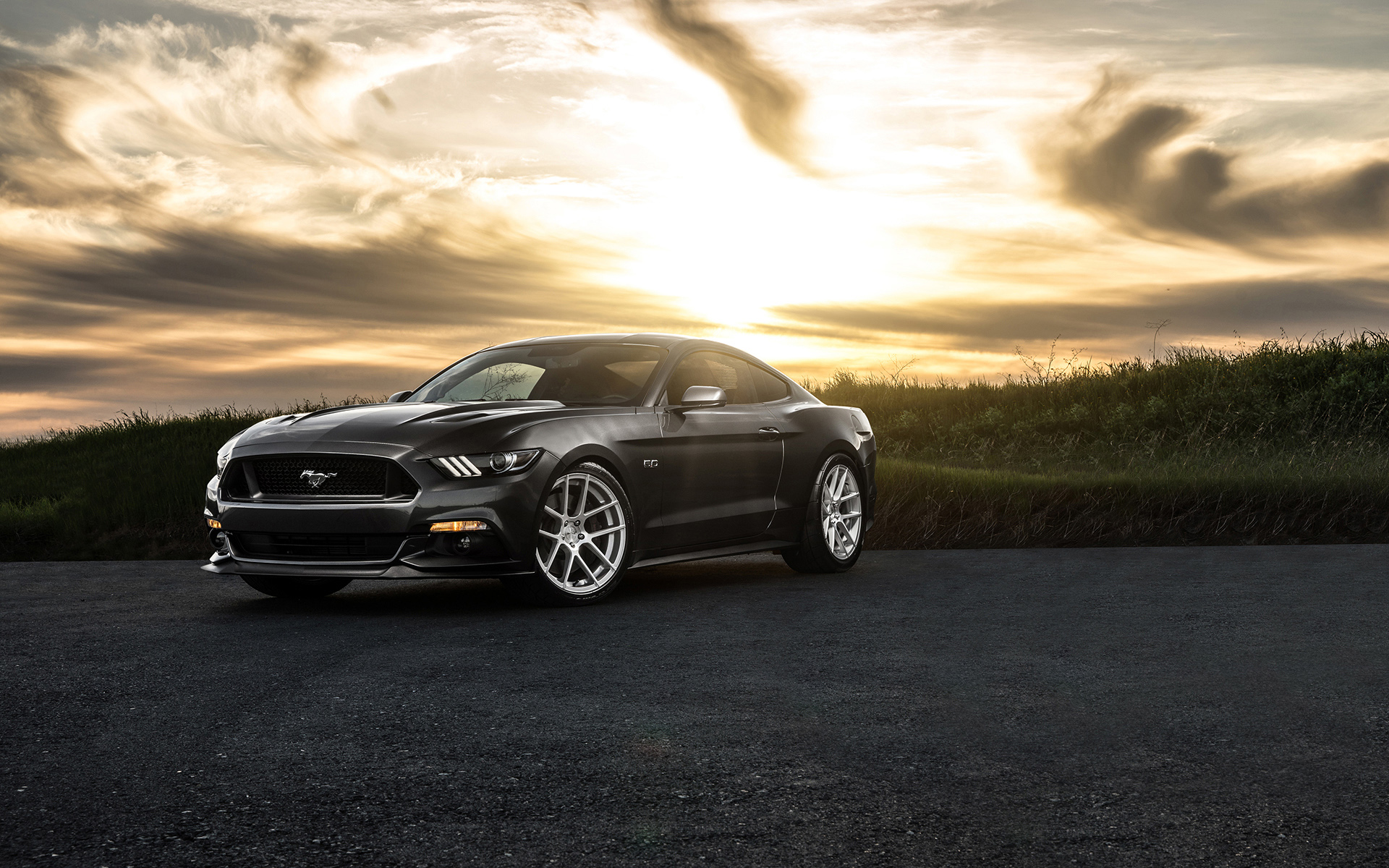 ford mustang 2015 avant garde wide1 - Rent a Car Iran   Cheapest Car Hire in Tehran